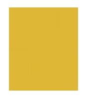 logo_elcoloso